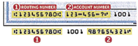 Check routing and account number example